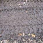 Spuren im Sand der B96 Version 3 (c) Foto von Susanne Haun