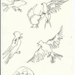 Blatt 65 Busch voller Schwalben Vers. 1 (c) Zeichnung von Susanne Haun