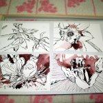 Alle vier Zeichnungen in einem Rahmen erscheinen mir zu viel (c) Foto von Susanne Haun