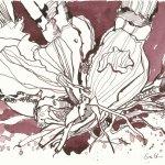 Narzissen 18 x 26 cm Tusche auf Hahnemühle Bütten (c) ZeichnungZeichnung von Susanne Haun Vers. 4