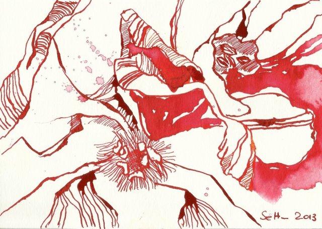 Blatt 2 Primel 12 x 17 cm (c) Zeichnung von Susanne Haun
