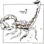 8 Skorpion (c) Zeichnung von Susanne Haun