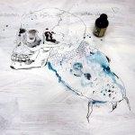 Der Totenkopf und der Wels (c) Zeichnung von Susanne Haun