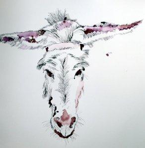 Eselskopf (c) Zeichnung von Susanne Haun