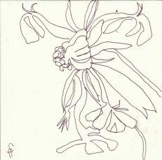Klostergarten Chorin (c) Zeichnung von Susanne Haun