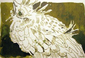 Amsel (c) Zeichnung von Susanne Haun