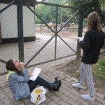 Auch draußen zeichnen die Teens