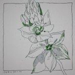 Blumenzeichnung Teri - 25 x 25 cm - Vers. 1 (c) Foto von Susanne Haun