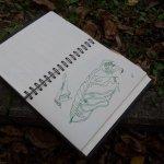 Das Herbstlaub vor der Uni - Zeichnung von Susanne Haun