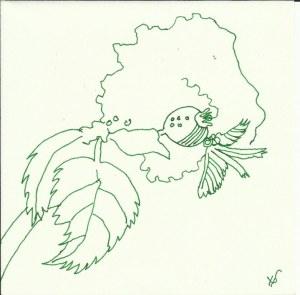 Pflanzen im Schnee Vers 1 (c) Zeichnung von Susanne Haun