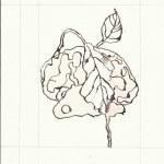 Dialog Bewusst-Sein Blatt 8 Vers. 1 (c) Zeichnung von Susanne Haun
