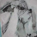 Natur - Ziege (c) Zeichnung auf Leinwand von Susanne Haun