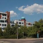 Hundertwasserschule Luther-Melanchthons-Gymnasiums in Wittenberg (c) Foto von Susanne Haun