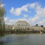 Palmenhaus in Kew Garden (c) Foto von Susanne Haun