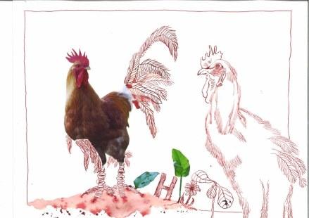 5 Hahn - 30 x 40 cm - Tusche auf Bütten (c) Zeichnung - Collage von Susanne Haun