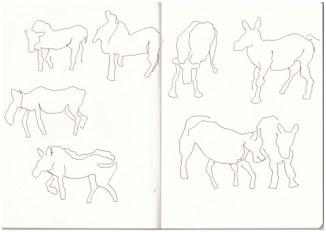 Im Zoo - Zebra (c) Zeichnung von Susanne Haun