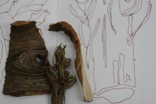 Holzstückchen als Inspirationsquelle (c) Foto von Susanne Haun