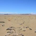 Auf dem Weg zur Grenze Namibia (c) Foto von M.Fanke
