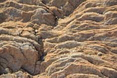 Im Schiefergebirge in Namibia (c) Foto von Susanne Haun