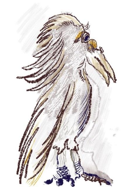 Vogel (c) Zeichnung auf iPad von Susanne Haun