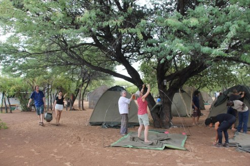 Zelt aufbauen in Ghanzi Botswana (c) Foto von Susanne Haun