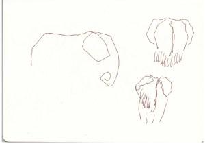 Es ist nicht einfach, Tiere aus riesiger Entfernung zu zeichnen (c) Susanne Haun