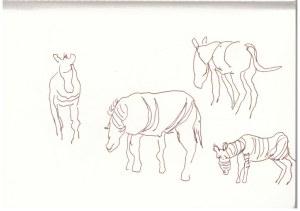 Die Zebras standen direkt neben dem Truck (c) Zeichnung von Susanne Haun