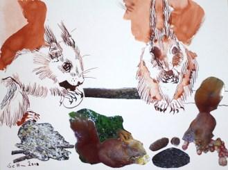 Die Eichhörnchen MittagessenZeit (c) Collage von Susanne Haun