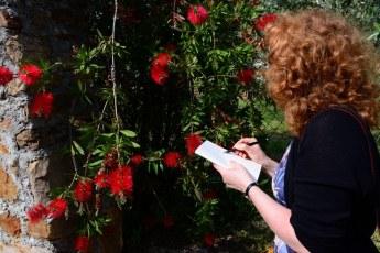 Toskana - Susanne Haun inSt. Andrea die Compito (c) Foto von M.Fanke