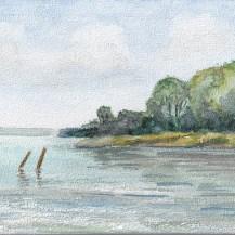 Wolfgang Bergt, Rostock