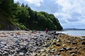 Künstlerin Susanne Haun an der Küste von Eckernförde (c) Foto von M.Fanke