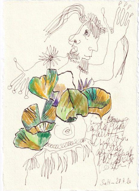 Tagebucheintrag 28.7.2020, Hula Hop der Seerosen, 20 x 15 cm, Tinte und Buntstift auf Silberburg Büttenpapier, Zeichnung von Susanne Haun (c) VG Bild-Kunst, Bonn 2020