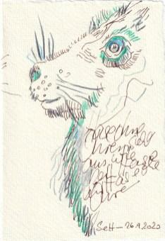 Tagebucheintrag 26.09.2020, Hase ohne Ohren, 15 x 10 cm, Tinte und Buntstift auf Silberburg Büttenpapier, Zeichnung von Susanne Haun (c) VG Bild-Kunst, Bonn 2020