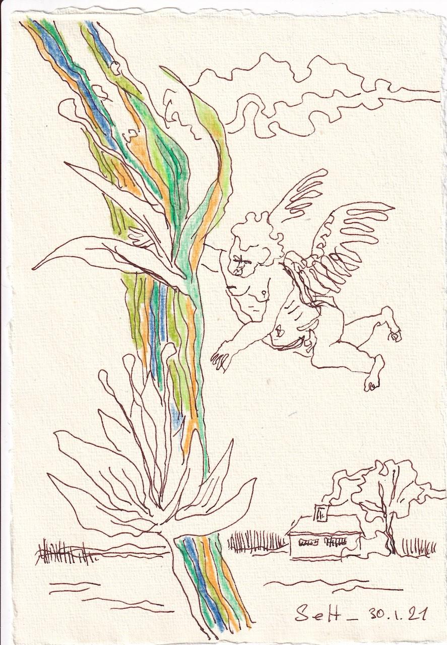 Tagebucheintrag 10.01.2021, Ein Engel hat sich verflogen, In Farbe, 20 x 15 cm, Tinte auf Silberburg Büttenpapier, Zeichnung von Susanne Haun (c) VG Bild-Kunst, Bonn 2021