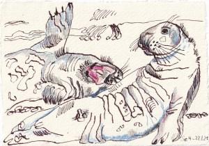 Tagebucheintrag 22.01.2021, View of a Seal, Comedy, 20 x 15 cm, Tinte und Buntstift auf Silberburg Büttenpapier, Zeichnung von Susanne Haun (c) VG Bild-Kunst, Bonn 2021