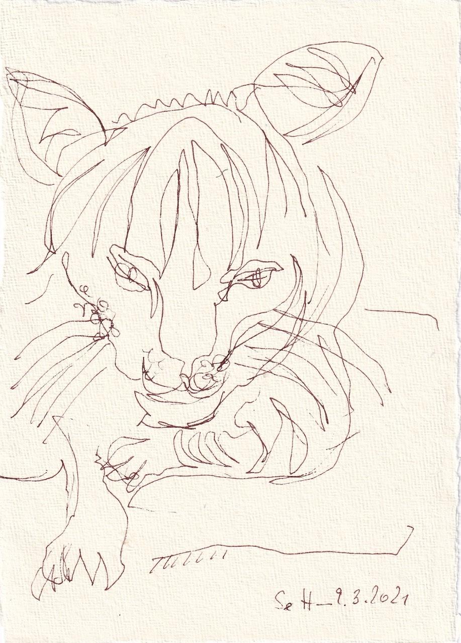 Tagebucheintrag 09.03.2021, Katzen Bewegung, Version 1, 20 x 15 cm, Tinte auf Silberburg Büttenpapier, Zeichnung von Susanne Haun (c) VG Bild-Kunst, Bonn 2021