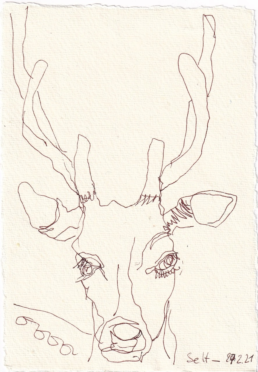 Tagebucheintrag 27.02.2021, Wird das ein Zwoelfender, Version 1, 20 x 15 cm, Tinte auf Silberburg Büttenpapier, Zeichnung von Susanne Haun (c) VG Bild-Kunst, Bonn 2021