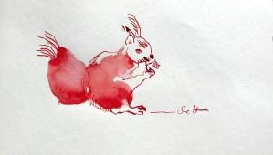 Eichhörnchen - Kuh Verso (c) Zeichnung von Susanne Haun