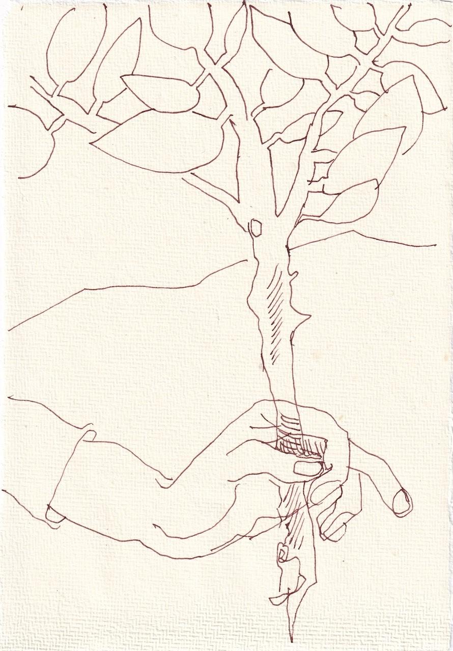 Tagebucheintrag 02.05.2021, Judith trägt den Olivenzweig, V2, 20 x 15 cm, Tinte und Buntstift auf Silberburg Büttenpapier, Zeichnung von Susanne Haun (c) VG Bild-Kunst, Bonn 2021