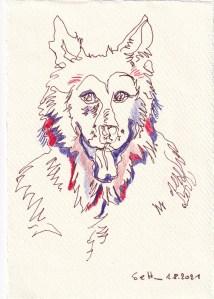Tagebucheintrag 01.08.2021, Der Wolf, Jäger und Gejagter, Version 1, 20 x 15 cm, Tinte und Buntstift auf Silberburg Büttenpapier, Zeichnung von Susanne Haun (c) VG Bild-Kunst, Bonn 2021