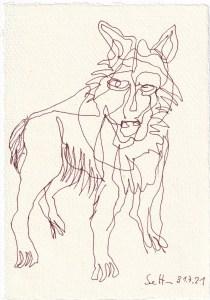 Tagebucheintrag 01.08.2021, Der Wolf, Jäger und Gejagter, Version 3, 20 x 15 cm, Tinte auf Silberburg Büttenpapier, Zeichnung von Susanne Haun (c) VG Bild-Kunst, Bonn 2021