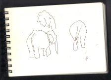 Elefanten - Skizze von Susanne Haun