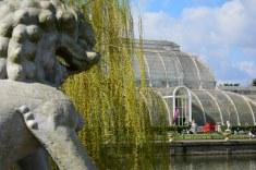Palmenhaus in Kew Garden (c) Foto von M.Fanke