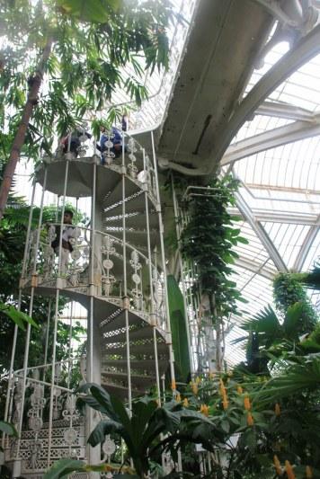 Im Palmenhaus in Kew Garden (c) Foto von Susanne Haun
