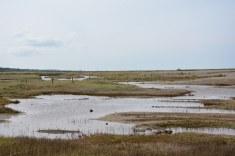 Auf dem Weg zu den Cley Marshes (c) Foto von M.Fanke