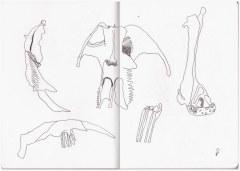 Knochenspiele (c) Zeichnung von Susanne Haun