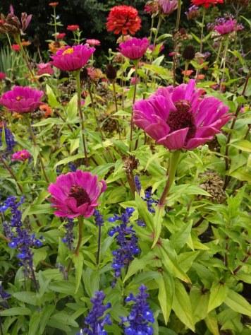 Botanischer Garten Göttingen (c) Foto von Susanne Haun