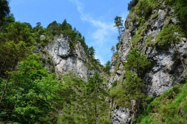 Aussicht in der Almbachklamm im Berchtesgadener Land (c) Foto von M.Fanke