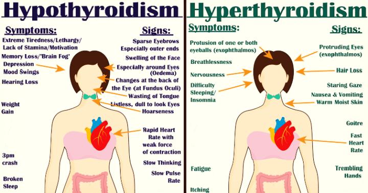 https://www.providr.com/tag/thyroid-treatments/