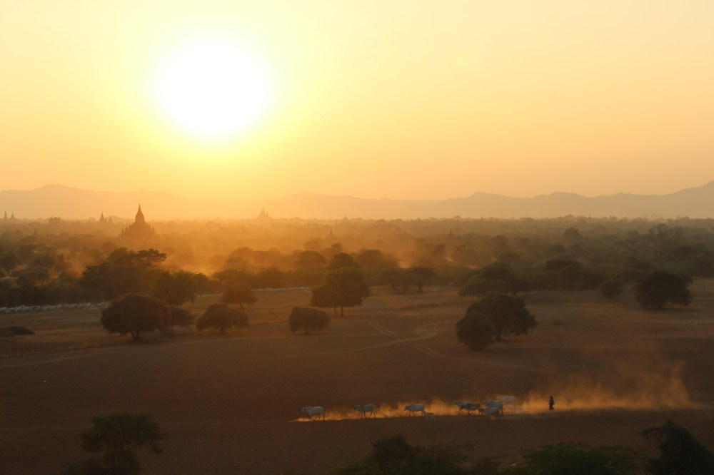 Tips voor tempelhoppen in Bagan  Susanne on the road